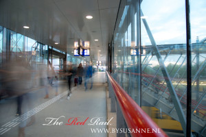 The-Red-Rail-On-the-move-300x200